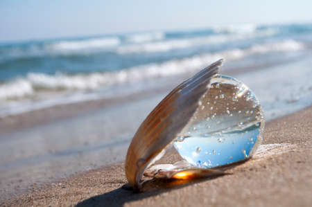 transparent crystal ball as the pearl lies in a seashell in the sand on the beach photo