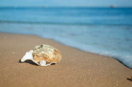 on the seashore yellow sand lies a shell with a pearl on the background of the sea and waves photo