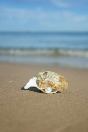 on the seashore yellow sand lies a shell with a pearl on the background of the sea and waves Stock Photo