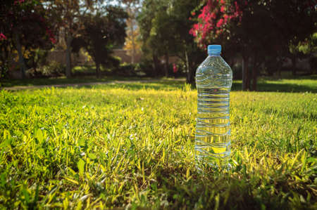 sencillez: a simple bottle of mineral water stands on a background of green grass and trees in the sunshine.