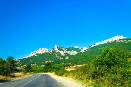 Mountain landscape. Summer, road, green trees and mountains