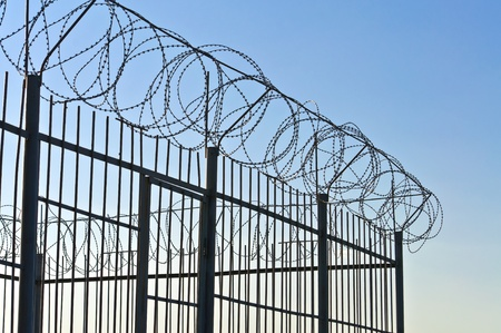 wire fence: Fence of barbed wire. Against the blue sky