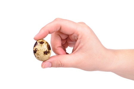 Quail eggs and hand. Photos isolated on white background photo