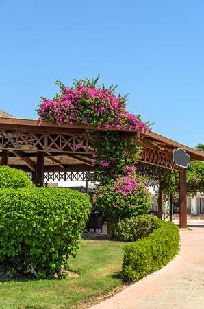 The resort in Egypt. Stock Photo