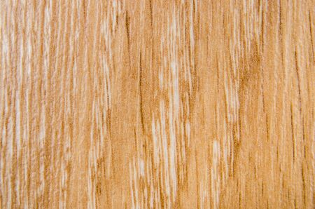 Wood texture. Macro photo for microstock Standard-Bild