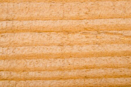 natural background: Wood texture. Macro photo for microstock Stock Photo