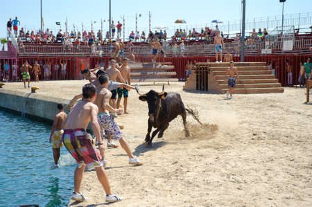 Bull party  Celebrations in honor of Our Lady of Loreto  Editorial