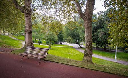 Green trees in park Bilbao Spain