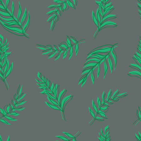 seamless pattern vector palm leaves green leaves and contours on background. For textiles, packaging, fabrics, wallpapers, backgrounds, invitations. Summer tropics Illustration