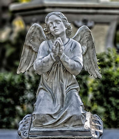 Praying angel in the churchyard on the background of trees photo