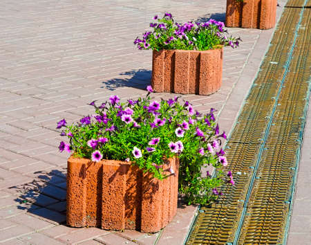 Beautiful street decorated with flowers in Ukraine, Kyiv Stock Photo