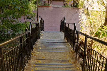 Stairs in a park in autumn day sunny sky trees