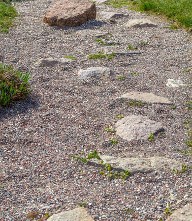 pollard: The Small Stone walk path in the park with green grass background Stock Photo