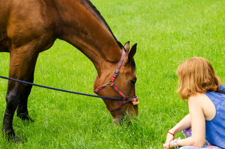 Girl watches a horse graze in summer Imagens
