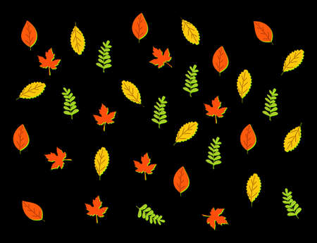 Set of abstract leaves. Vector design elements Ilustrace