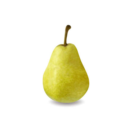 Green pear isolated on white background Vector illustration