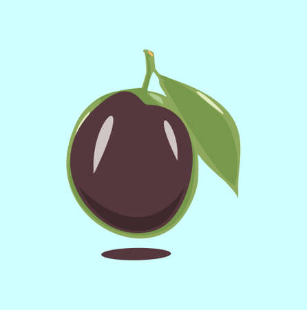 Ripe plum with green leaves on white vector illustration