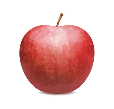 Red apple isolated on white background. Vector illustration 矢量图像
