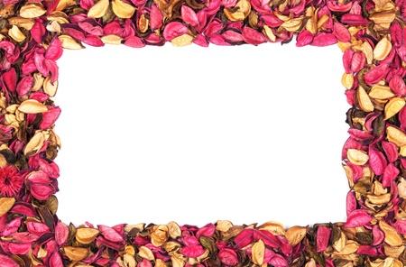 flores fucsia: Marco de pétalos de flores rojas sobre un fondo blanco