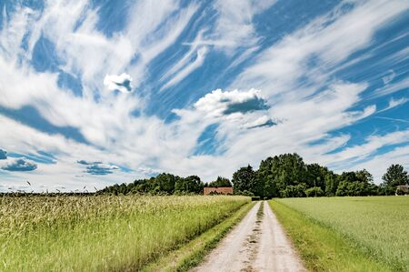 Road to a farm. Beautiful summer village landscape of middle Estonia