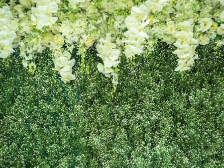 wedding backdrop: Flowers backdrop in wedding ceremony Stock Photo