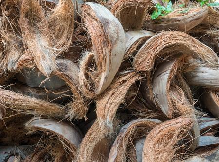 Plenty of coir heap on the ground Stock Photo