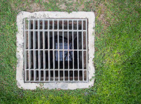 grate: Steel square shape sewer grate on lawn Stock Photo