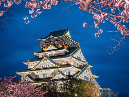 osaka: Osaka castle among cherry blossom (sakura) in the evening scene after sunset with dark blue sky and light (selective focus on the castle with blurry foreground of branches and cherry blossom trees)