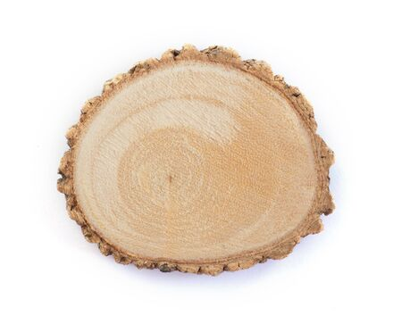 Cross section of tree branch isolate on white background for copy space Archivio Fotografico