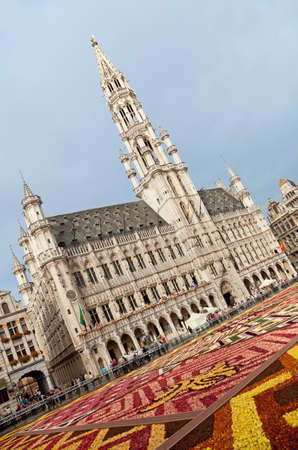 cityhall: Flower Carpet in front of Brussels Town Hall at the Grand Place; This year design of the carpet in this biannual event was in honor of Africa.