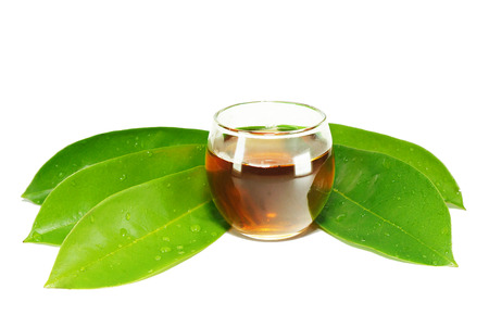 Green Soursop leaves and tea, isolated on white background