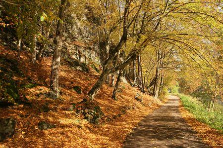 Autumn scene - road along the river Sazava (Czech Republic) Stock Photo