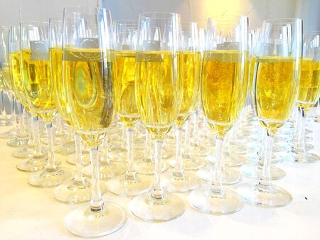 cava: Bunch of champagne glasses files with champagne or cava on a party or Some sort of celebration