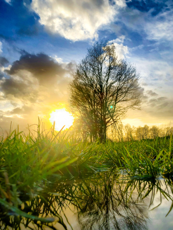Cloudy sunset or sunrise sky in a rural countryside landscape with grass and trees reflected in a puddle after the rain Stock Photo