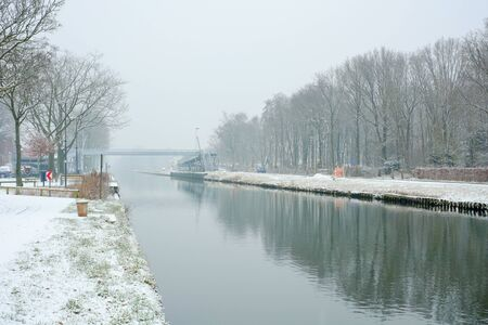 Row of bare frozen trees along the river on a winter snowy morning