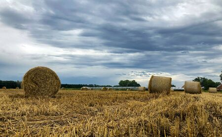 Summer storm looms over harvested hay field with hay bales in the Kempen area, Belgium