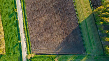 Aerial view geometric farming fields, showing a green meadow and plowed fields, captured with a drone. High quality photo