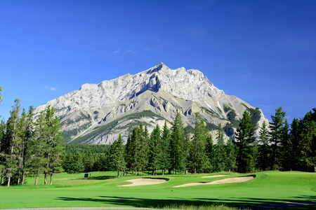 golf course: Mountain view from the golf course in Banff Alberta,Canada