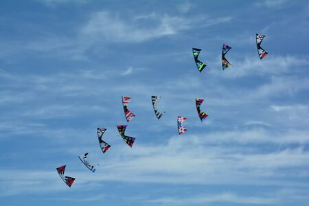 unison: Kites flying in unison trying to catch each other.
