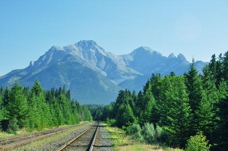 banff: Scenic mountain vista in Banff National Park, Alberta Canada.