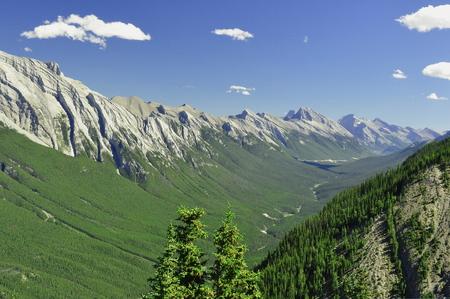 A fertile valley in Banff National Park,Alberta,Canada