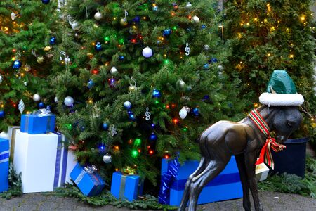 victoria bc: Christmas time at the Butchart Gardens in Victoria BC,Canada