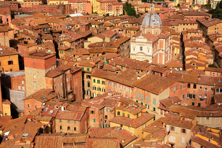 rooftops: Rooftops of Siena Italy