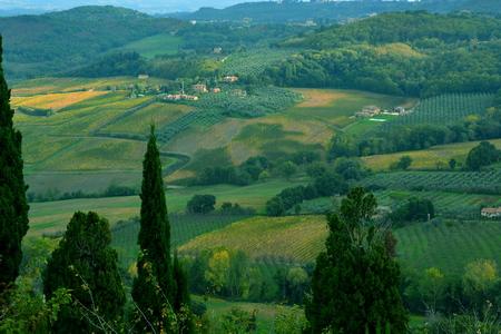 tierra fertil: Italian countryside near Siena Italy