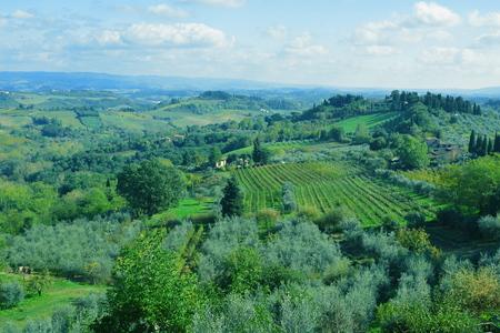 tierra fertil: Campo fuera italiana de San Gimignano, Toscana Italia