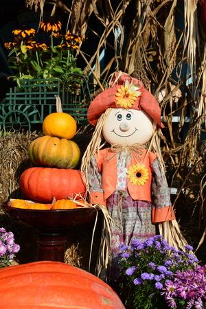 farm market: Pumpkin art at the farm market.