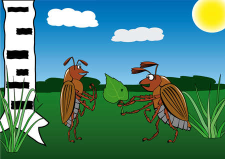 the enamoured: Spring. May. The enamoured bug. A vector illustration.