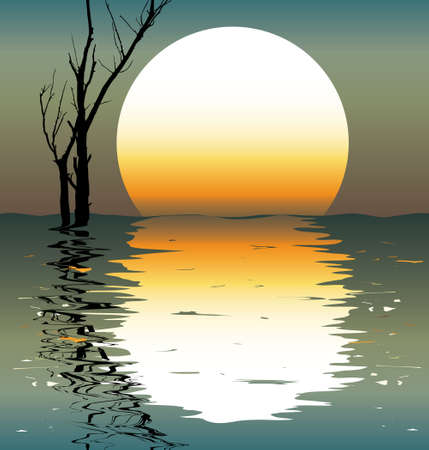 reflections: Lake. A night scene. A vector illustration.