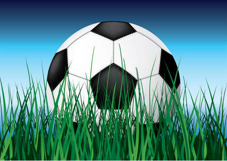 Soccer ball on grass. Vector illustration. Close-up. Stock Vector - 3148366