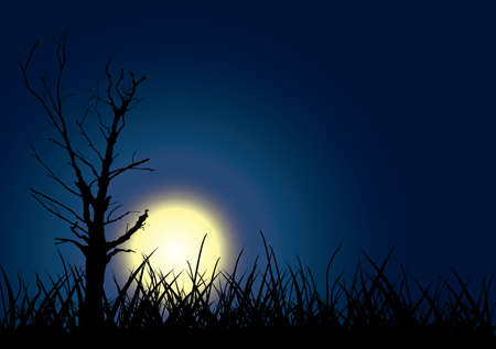Tree outline on moon sky background. Vector illustration. Vector